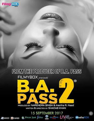 B A Pass 2 2017 Hindi Movie hevc HDRip 160Mb