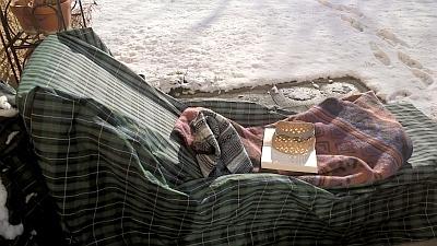gartentipps was machen hobbyg rtnerinnen im winter. Black Bedroom Furniture Sets. Home Design Ideas