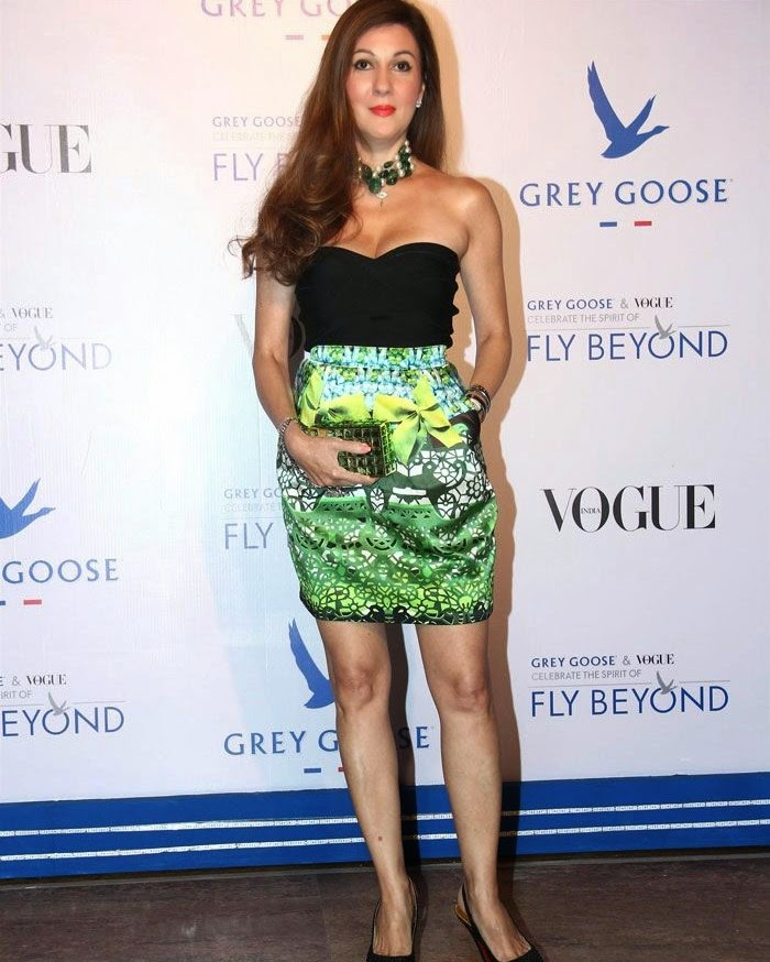 Grey Goose & Vogue's Fly Beyond Awards, Pics from Red Carpet of Grey Goose & Vogue's Fly Beyond Awards 2014