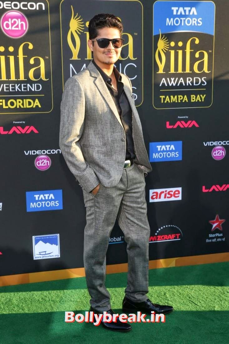 Vishal Malhotra, Bollywood Celebs sizzle on IIFA 2014 Green Carpet Pics