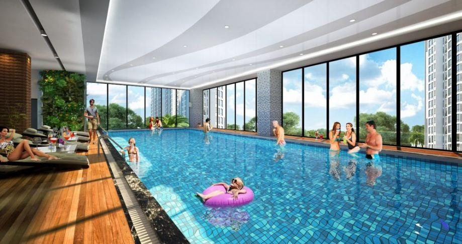 bể bơi qms tower 2