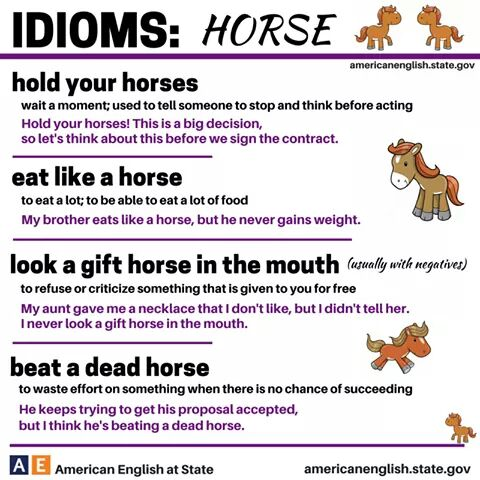 Idiomatic expressions