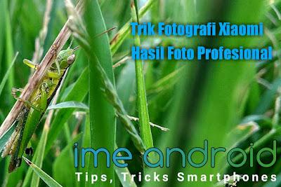 Trik dan Tips Fotografi Hasil Seperti DSLR menggunakan Hp Xiaomi