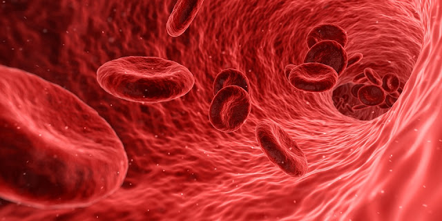 Ciri-ciri Kurang Darah Serta Gejala Pasti Jika Menderita Hipotensi