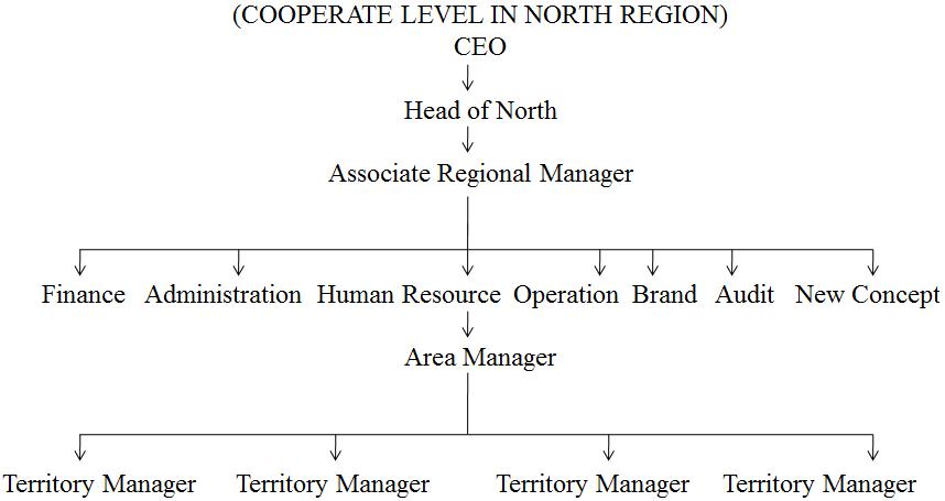 management information system of coca cola