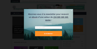 Popup de conversion pour la newsletter