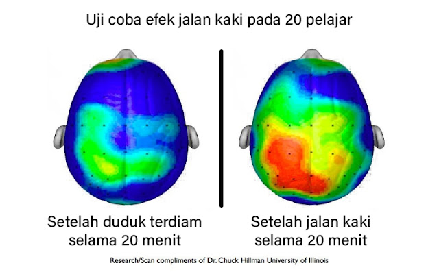 manfaat olahraga terhadap otak