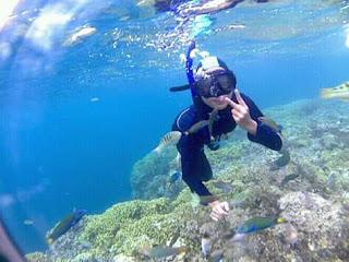 Terumbu karang yang indah di Pulau Menjangan