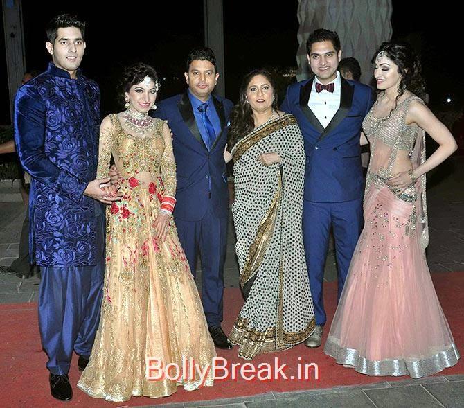 Hitesh, Tulsi, Bhushan Kumar, Sudeshi Kumar, Ayush Mehra, Khushali Kumar, Tulsi Kumar Wedding Reception Photo Gallery 2015