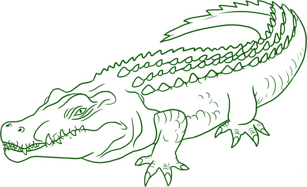 printable coloring pages crocodile - photo #26