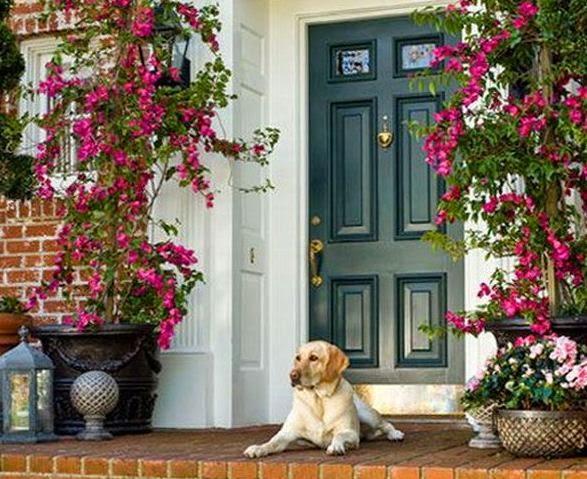 C mo decorar la entrada de la casa con macetas - Decorar la entrada de casa ...