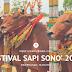 Festival Sapi Sono', Kontes Sapi Hias Asli Pamekasan