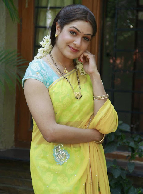 Aditi Agarwal Yellow Saree Photos