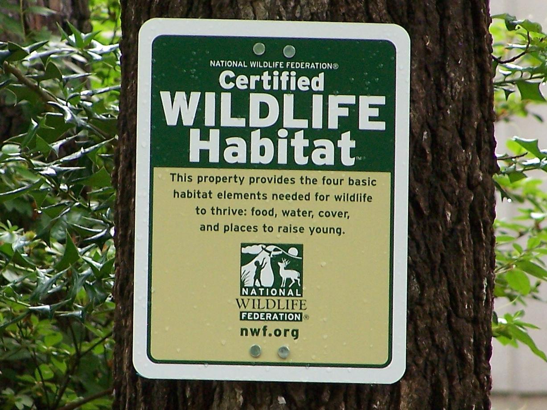 Green Place: Wildlife Habitat