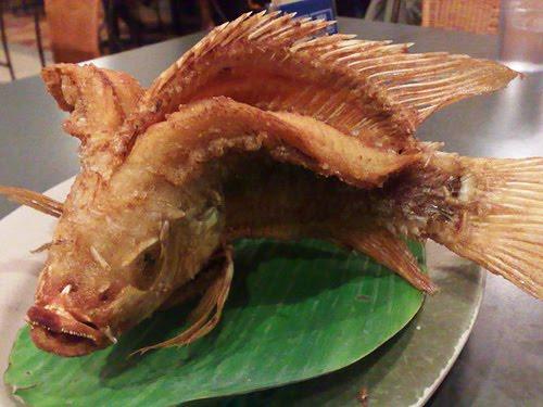 Suruh Pembantu Goreng Ikan Segar, Majikan ini Benar-Benar Kaget Saat Ikan Disajikan