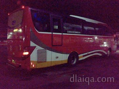 Bus Damri Royal Class (2)