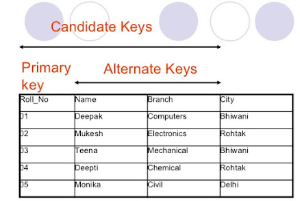 Difference between Primary key vs Candidate Key in SQL Database? Example