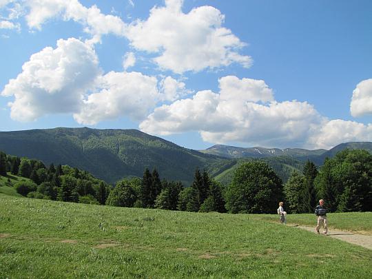 Widok z Vrch Podžiar w kierunku głównego grzbietu Małej Fatry.