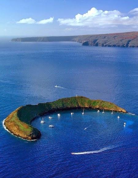 Hawaii Slanted House Design: Wonderful Luxury Houses, Glamorous Residencies, Stunning