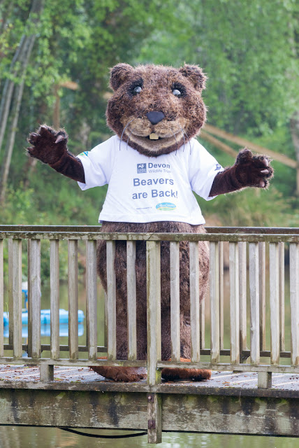 Devon Wildlife Trust - Nora makes an appearance at a recent Cofton Country Holidays event