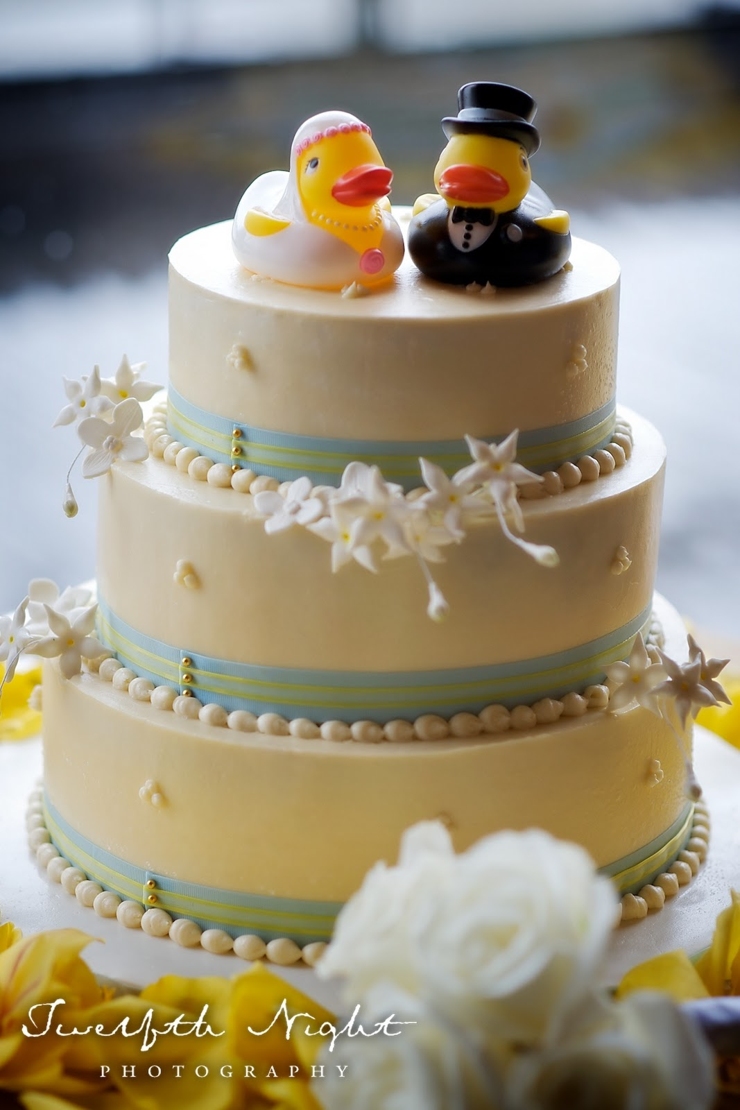 Vegan Wedding Cakes and Twelfth Night Photography  Be Nourished Now Inc Wellness inside and out