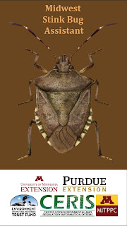 Midwest stinkbug assistant