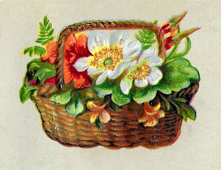 flower rose basket image botanical artwork illustration vintage
