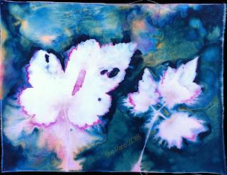 Wet cyanotype_Sue Reno_Image 443