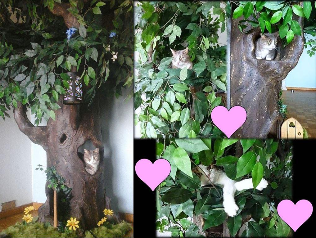 Unique Pet Trees