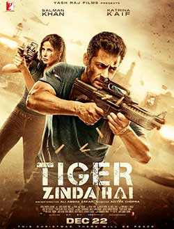 Tiger Zinda Hai 2017 Bollywood 300MB HDRip 480p at movies500.me