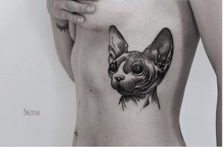 Сюрреализм в тату Ильи Бжезинского кошка
