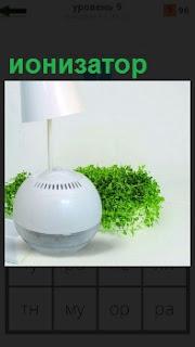 Для очистки воздуха используется ионизатор, рядом в кашпо растет зеленая трава