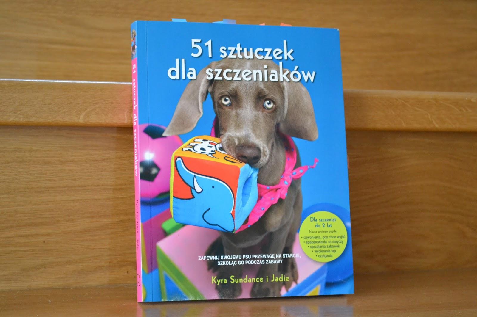 101 Psich Sztuczek Pdf