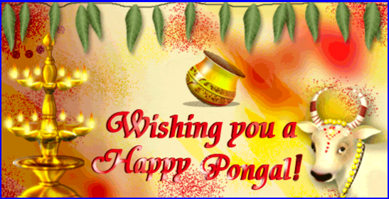 happy pongal 2019,pongal wishes,pongal 2019,happy pongal,happy pongal 2019 video status,pongal 2019 ecard,happy pongal 2019 status,happy pongal 2019 images,happy pongal 2019 whatsapp status,happy pongal 2019 wishes,happy pongal 2019 quotes,pongal whatsapp status,pongal status,pongal greetings,pongal wishes in telugu 2019,happy pongal whatsapp status,happy pongal wishes countdown,sankranti wishes in telugu