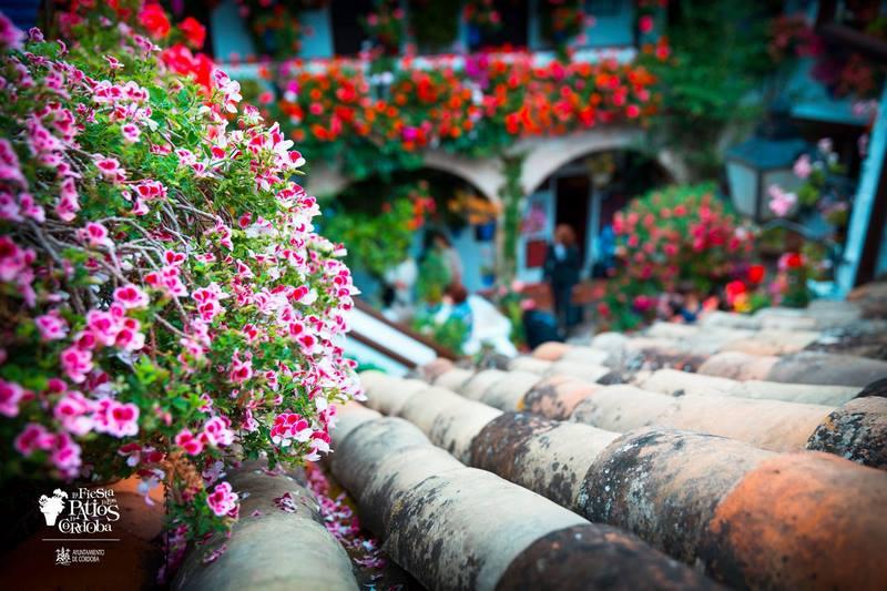 Fiesta Patios de Cordoba 2017. San Basilio, 44 - Ruta Alcazar Viejo Modalidad: Arquitectura antigua