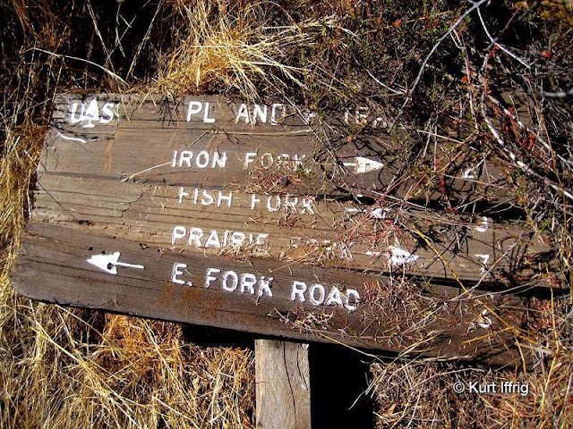 I found an old trail sign from the PL and P Trail, built in 1911, near the Horseshoe Annex Mine.