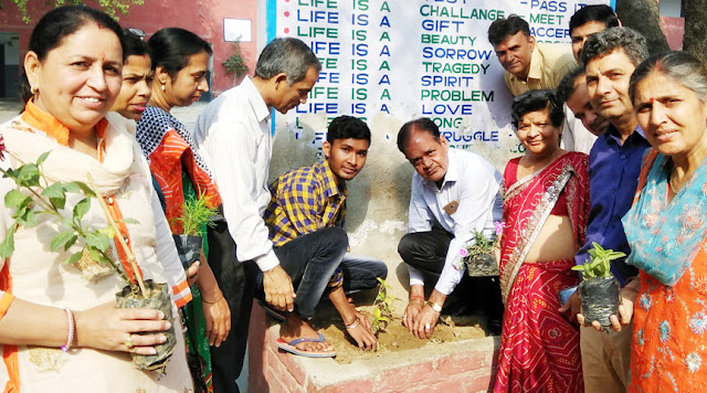 Planting by the Junior Red Cross on World Forestry Day in Government School of Sarai Khwaja