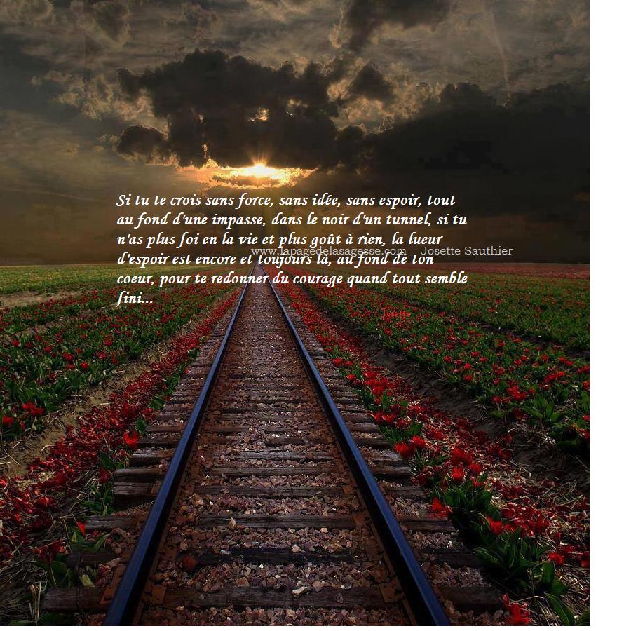 Les Panneaux Roses Citation Pour Remonter Le Moral Et