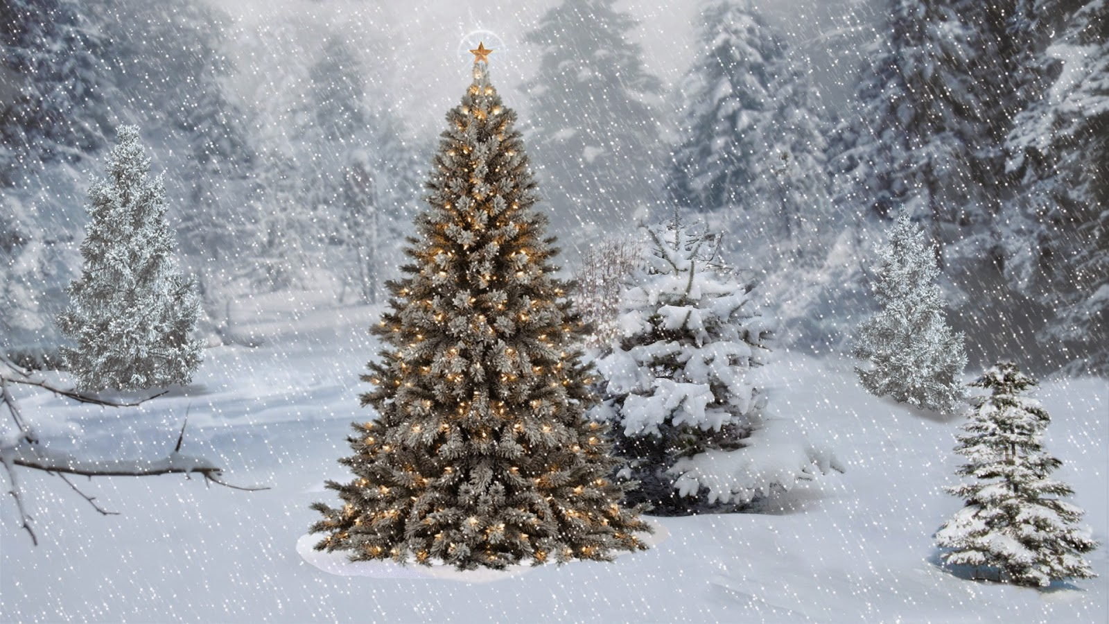 Christmas tree snow hd wallpaper full version free crack