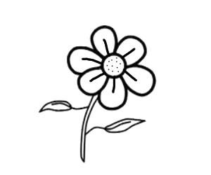 Cara Menggambar Bunga Yang Mudah Cilacap Klik