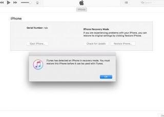 iTunes DFU