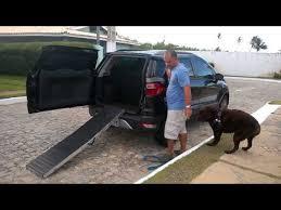 rampa para veículos para cães pesados ou com lesão subirem