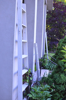 DIY Ladders for Climbing Plants on Stucco Pillars Stone House