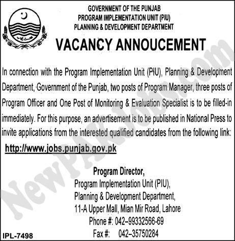 Govt Jobs in Program Implementation Unit,