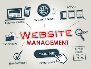 manajemen website