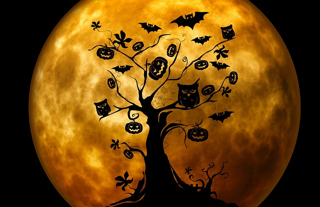 halloween-safety-tips-for-county
