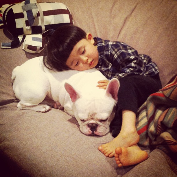Boy and His French Bulldog