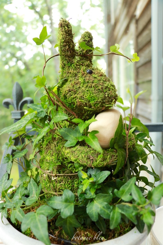 low-cost-ivy-moss-bunny-topiary