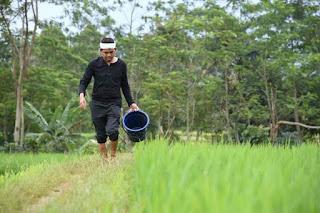Dongeng bahasa sunda Lucu, si Kabayan, di titah ngala tutut ku nyi iteung, piseurieun!