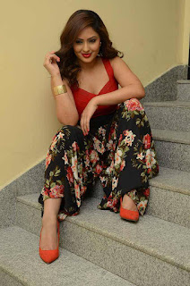 Actress Nikesha Patel Pictures in floral jumper at Araku Road Lo Press Meet  0044.jpg